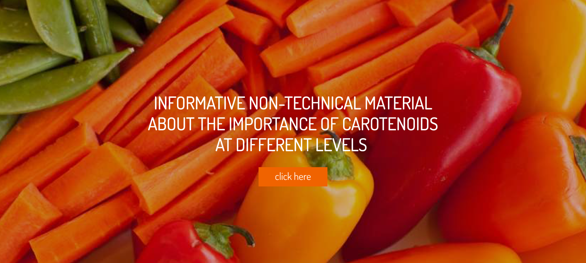 INFORMATIVE NON-TECHNICAL MATERIAL ABOUT THE IMPORTANCE OF CAROTENOIDS AT DIFFERENT LEVELS